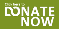home_donate_now